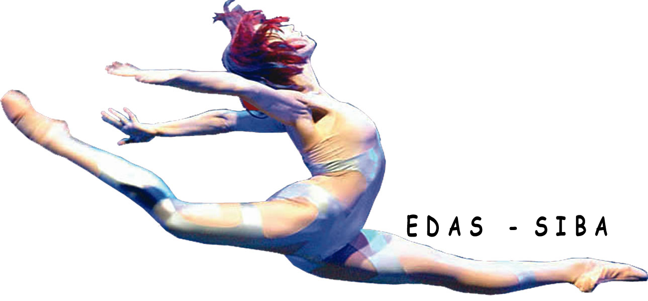 EDAS-SIBA Salzburg International Ballet Workshops